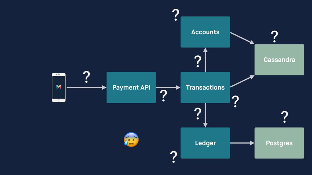 Payment API Transactions Ledger Accounts Cassan...