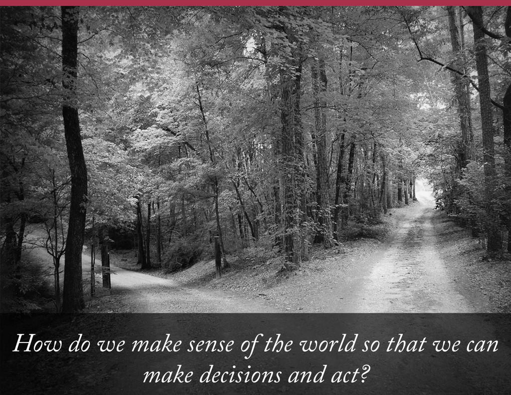 How do we make sense of the world so that we ca...