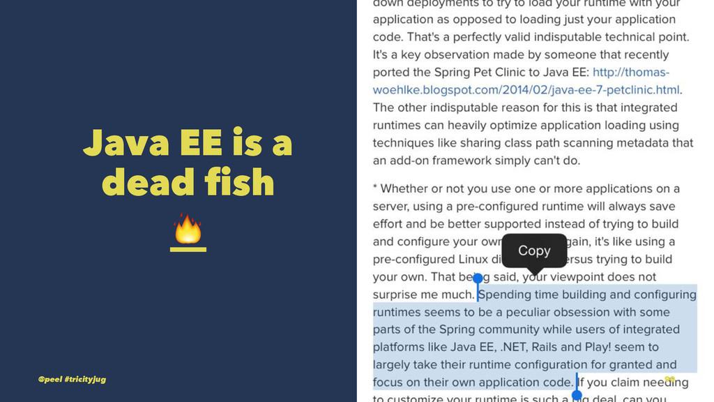 Java EE is a dead fish ! @peel #tricityjug 90