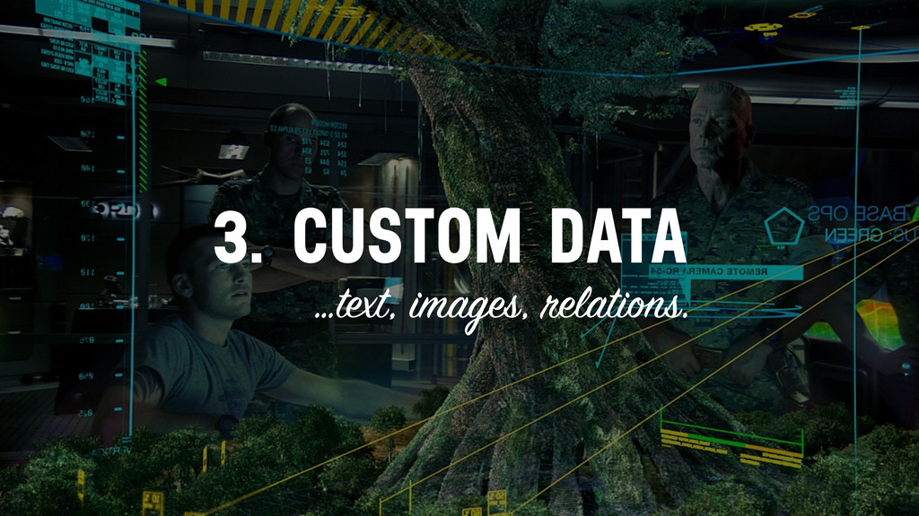3. CUSTOM DATA …text, images, relations.