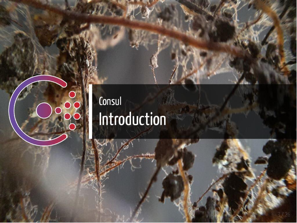 Consul Introduction 3 / 26