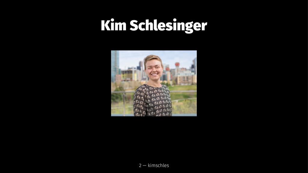 Kim Schlesinger 2 — kimschles
