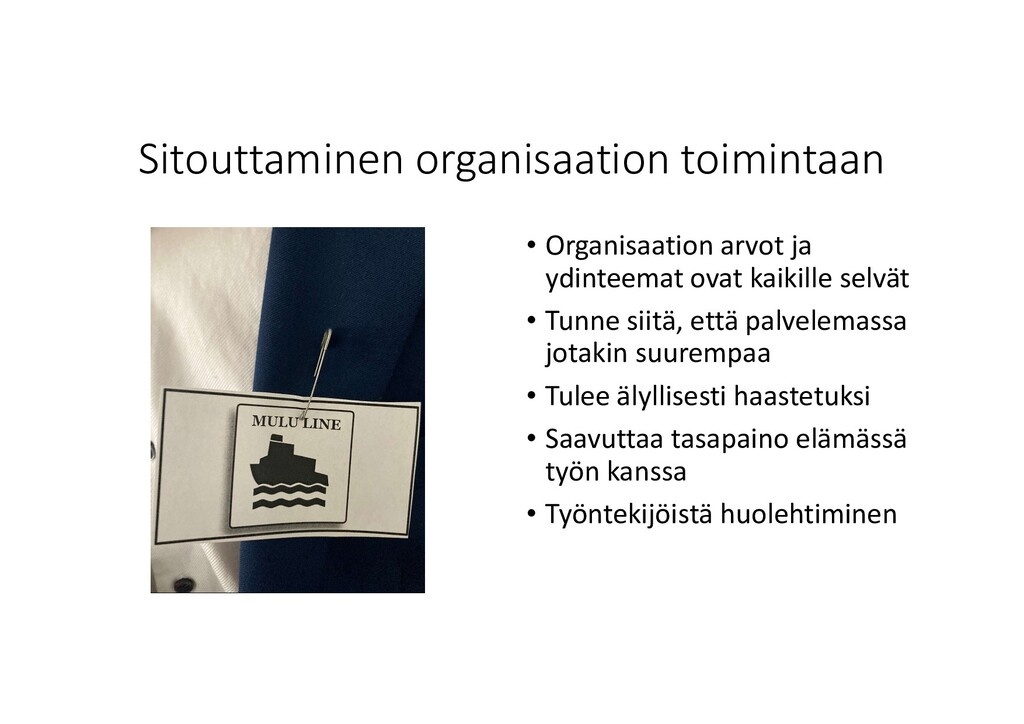 Sitouttaminen organisaation toimintaan • Organi...