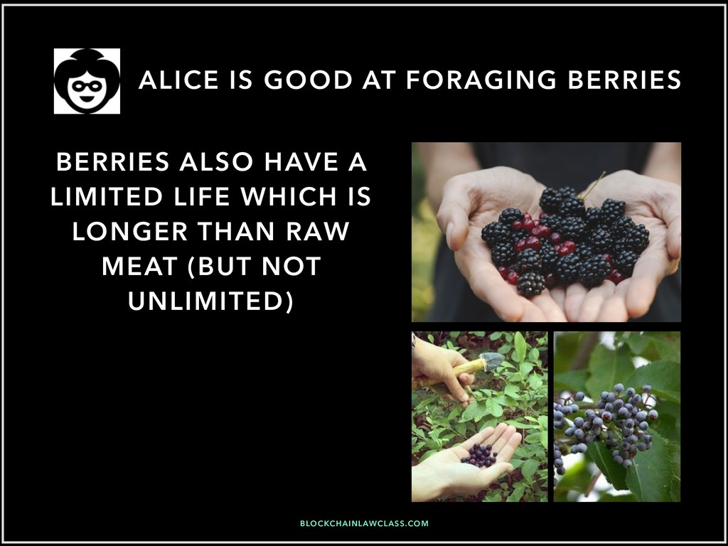 ALICE IS GOOD AT FORAGING BERRIES BLOCKCHAINLAW...