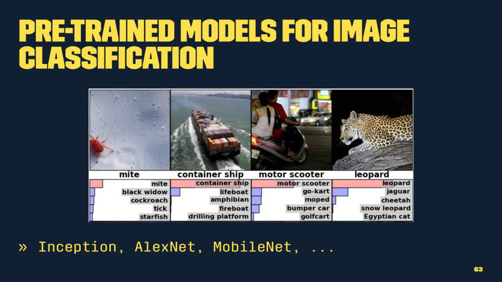 Pre-trained Models for Image Classification » In...