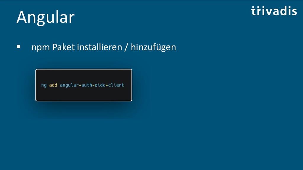 Angular ▪ npm Paket installieren / hinzufügen