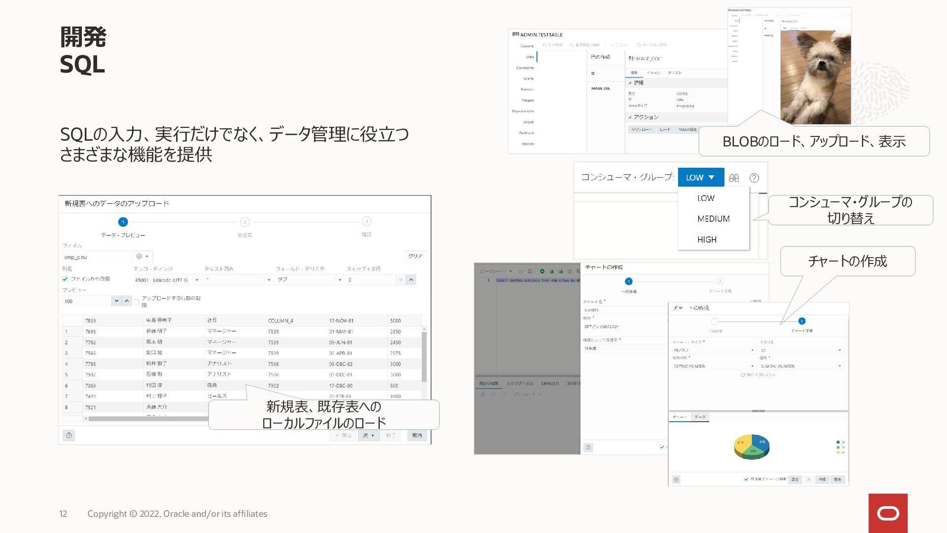 Autonomous Database with Built-in Tool Suite 次世...