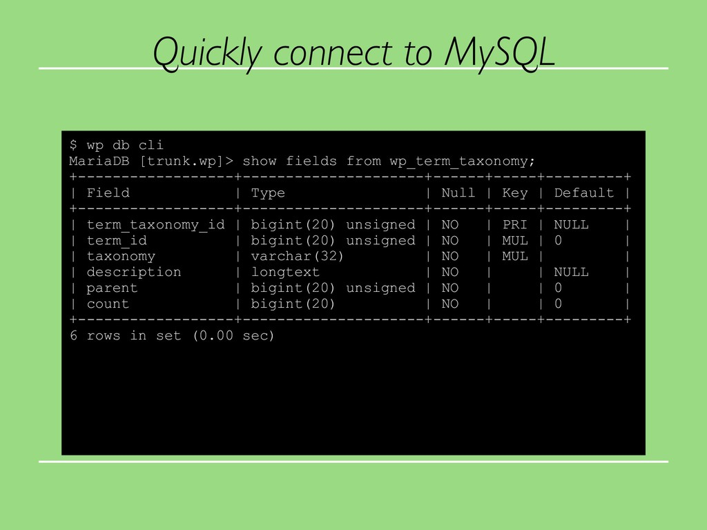 Quickly connect to MySQL $ wp db cli MariaDB [t...