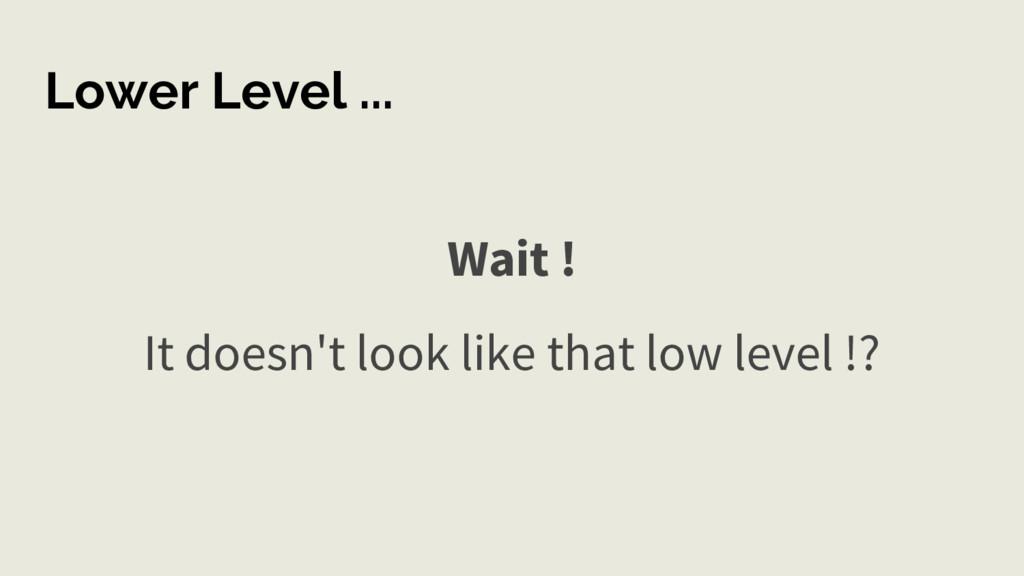 Lower Level ... Wait ! It doesn't look like tha...