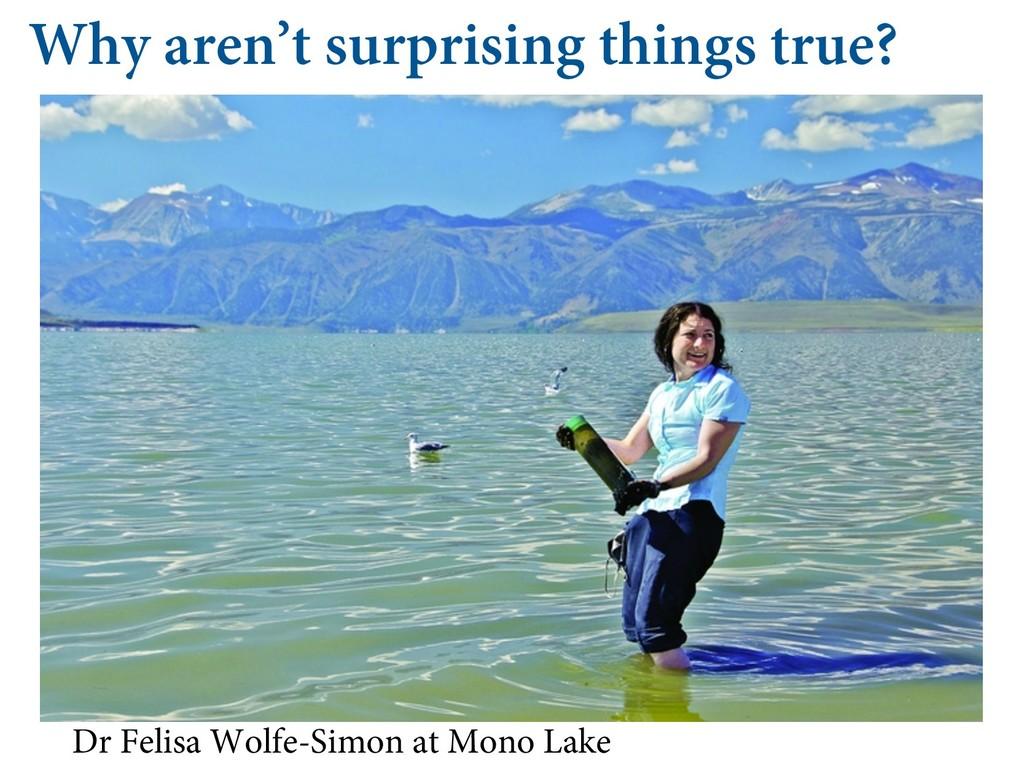 Why aren't surprising things true? Dr Felisa Wo...
