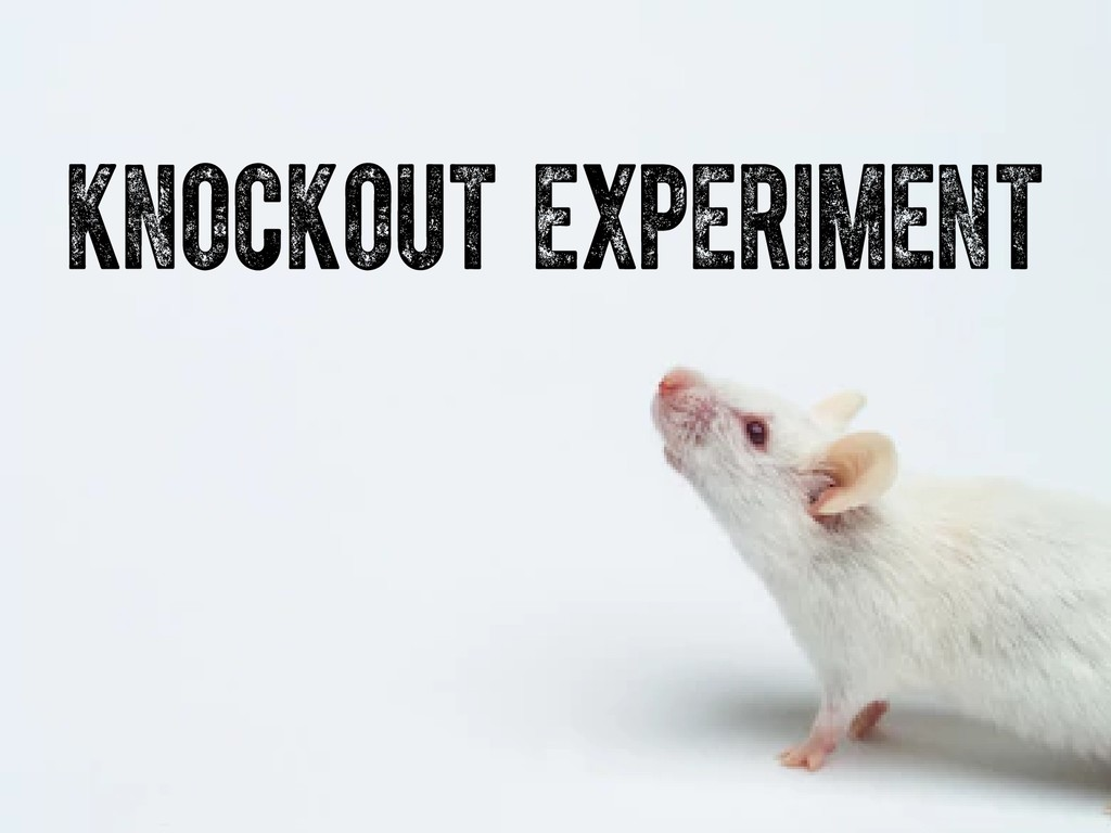 knockout experiment