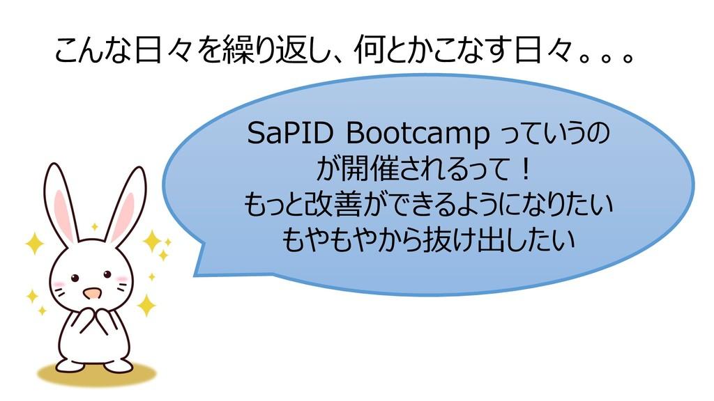 こんな日々を繰り返し、何とかこなす日々。。。 SaPID Bootcamp っていうの が開催...