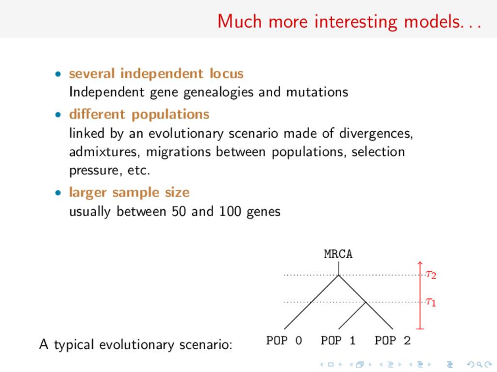 Much more interesting models. . . • several ind...