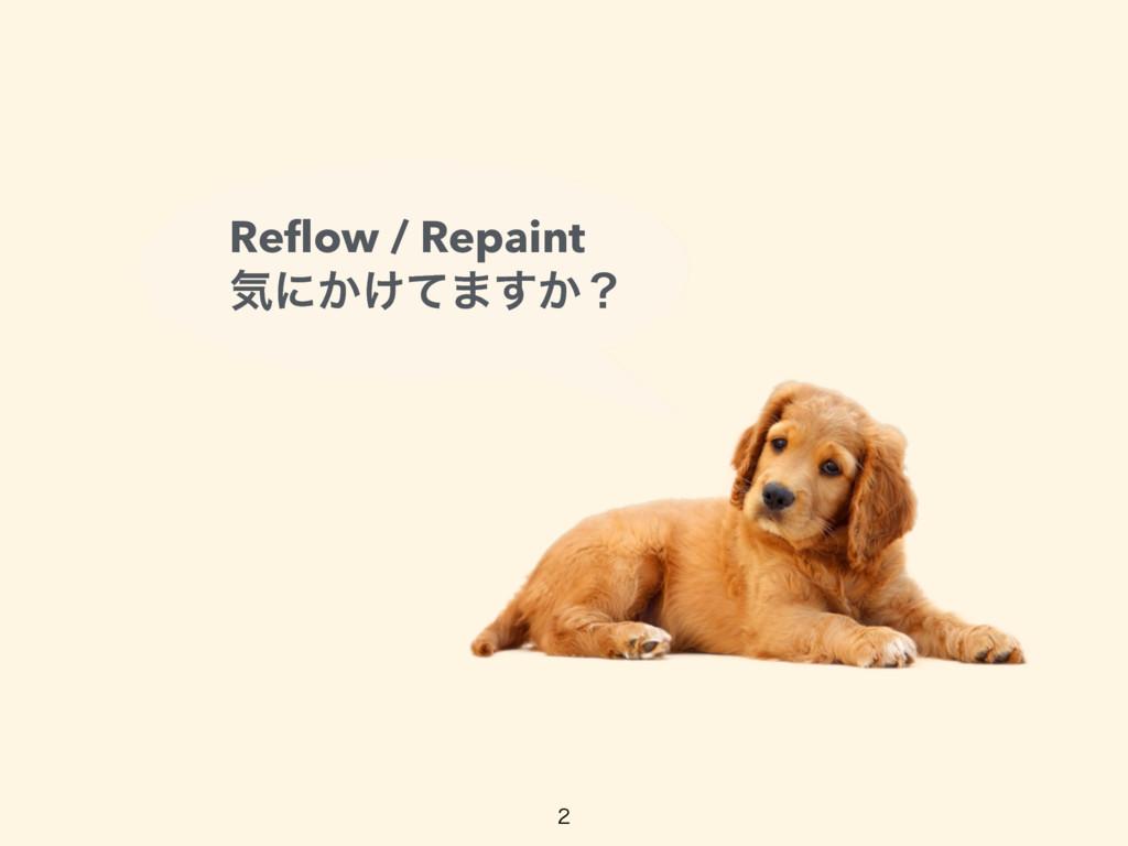 Reflow / Repaint ؾʹ͔͚ͯ·͔͢ʁ