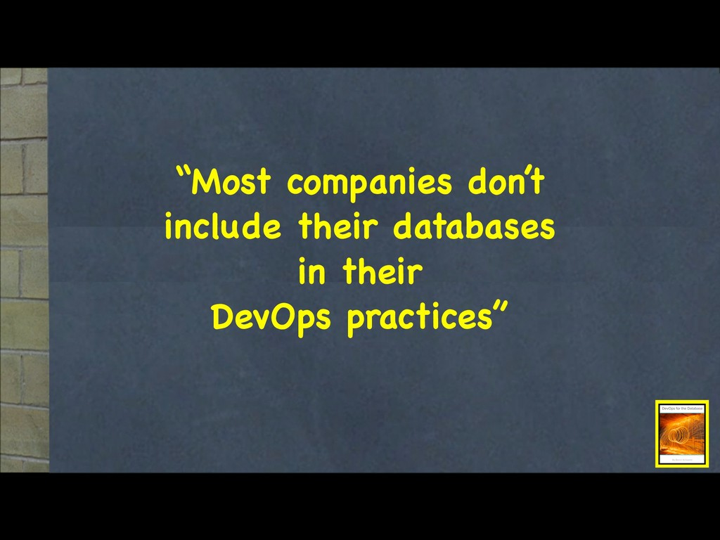 """""""Most companies don't include their databases  ..."""