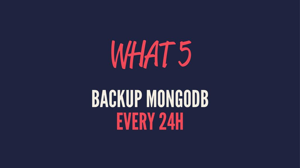 WHAT 5 BACKUP MONGODB EVERY 24H