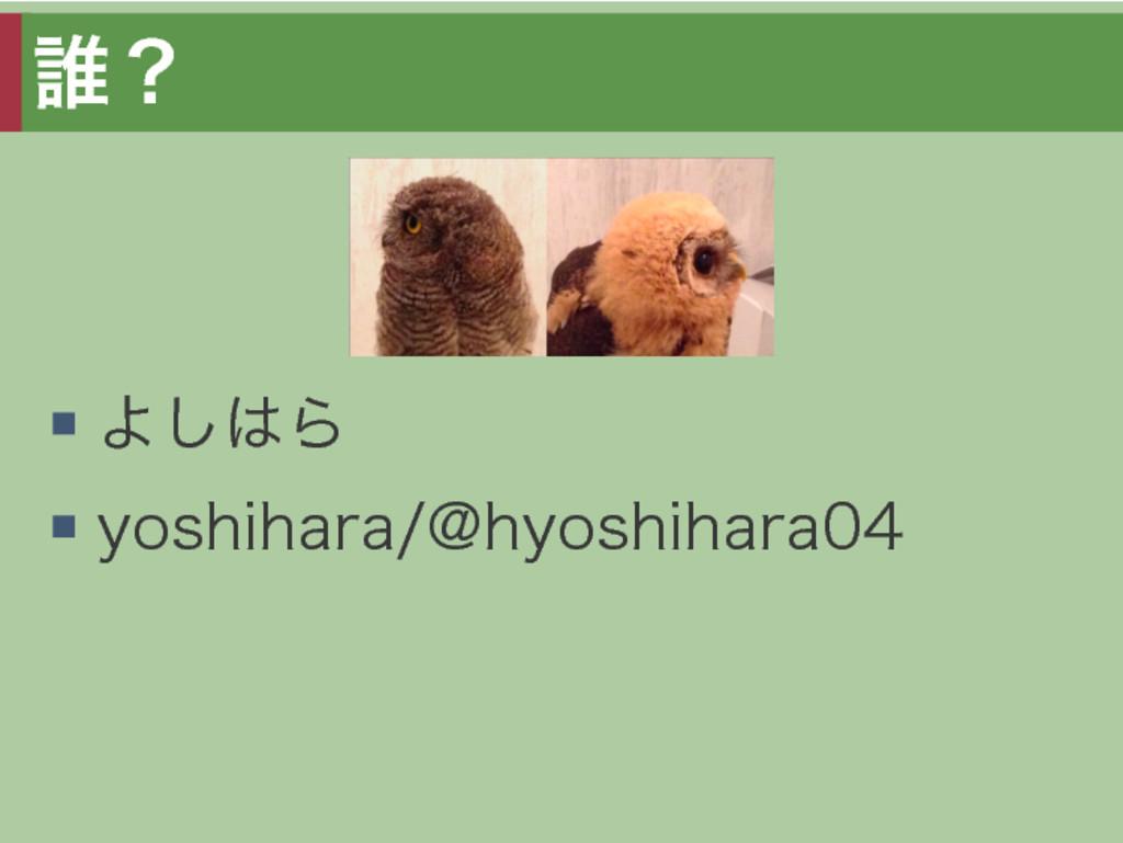 誰? よしはら yoshihara/@hyoshihara04