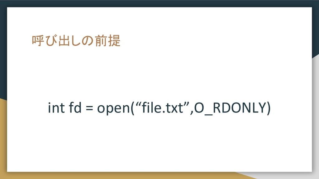 """呼び出しの前提 int fd = open(""""file.txt"""",O_RDONLY)"""