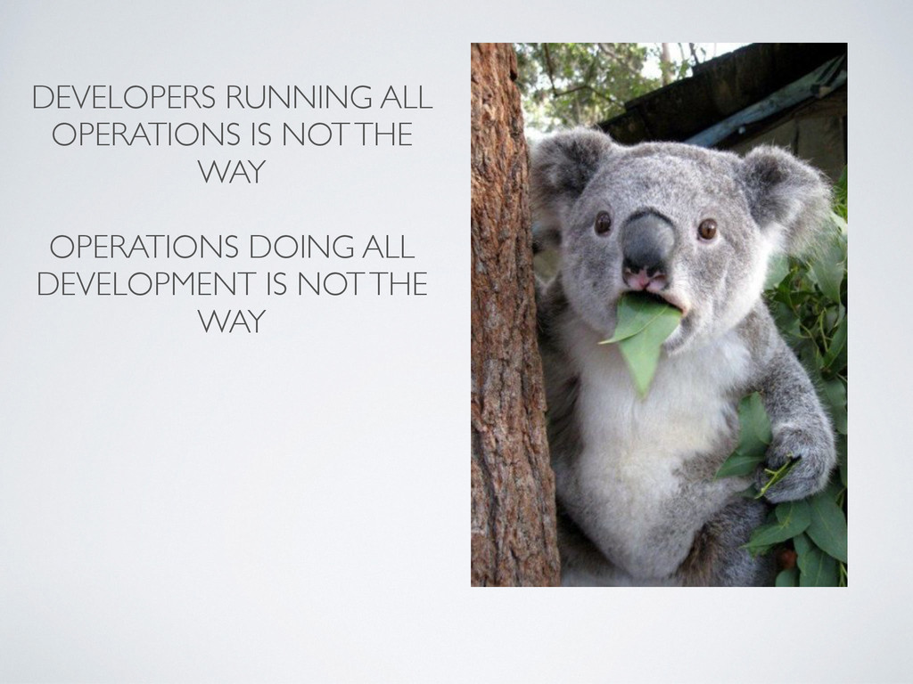 DEVELOPERS RUNNING ALL OPERATIONS IS NOT THE WA...