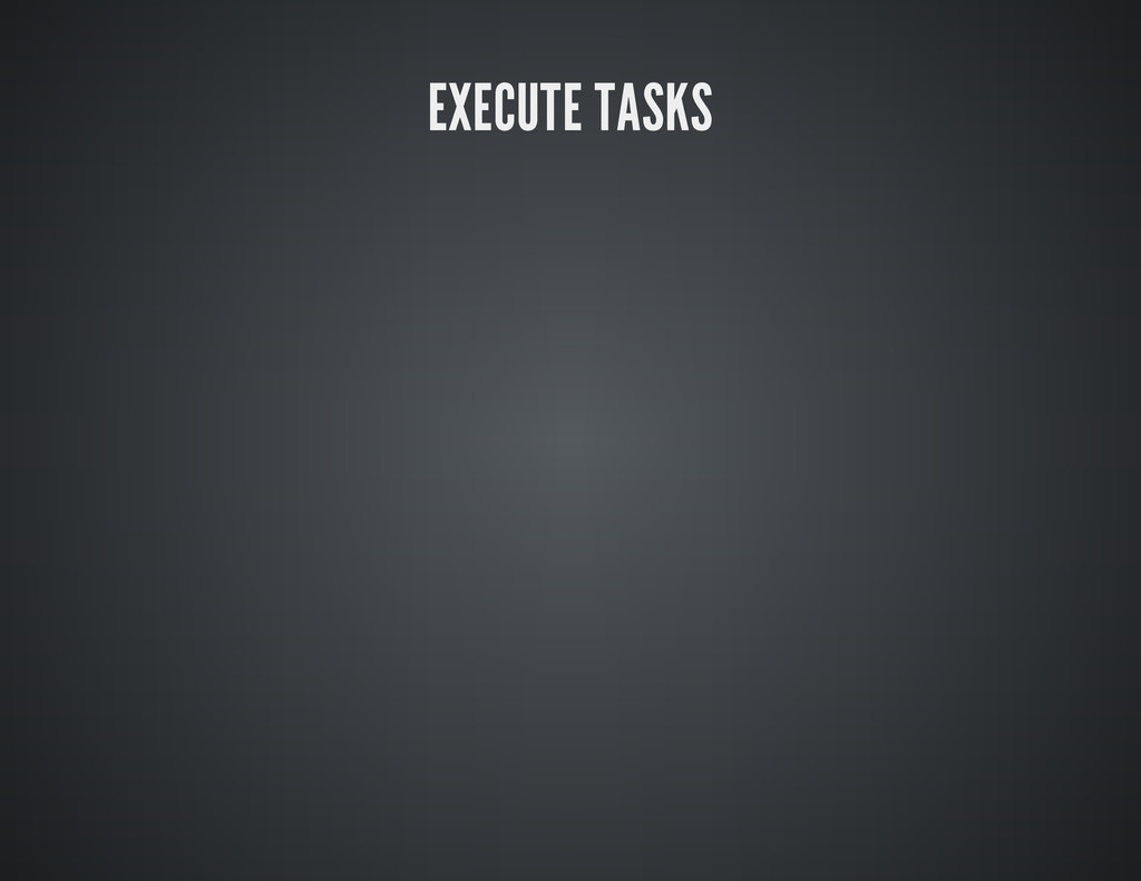 EXECUTE TASKS