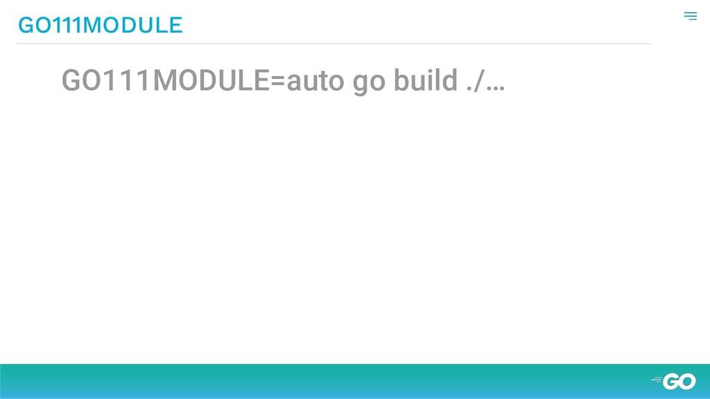 GO111MODULE=auto go build ./… GO111MODULE