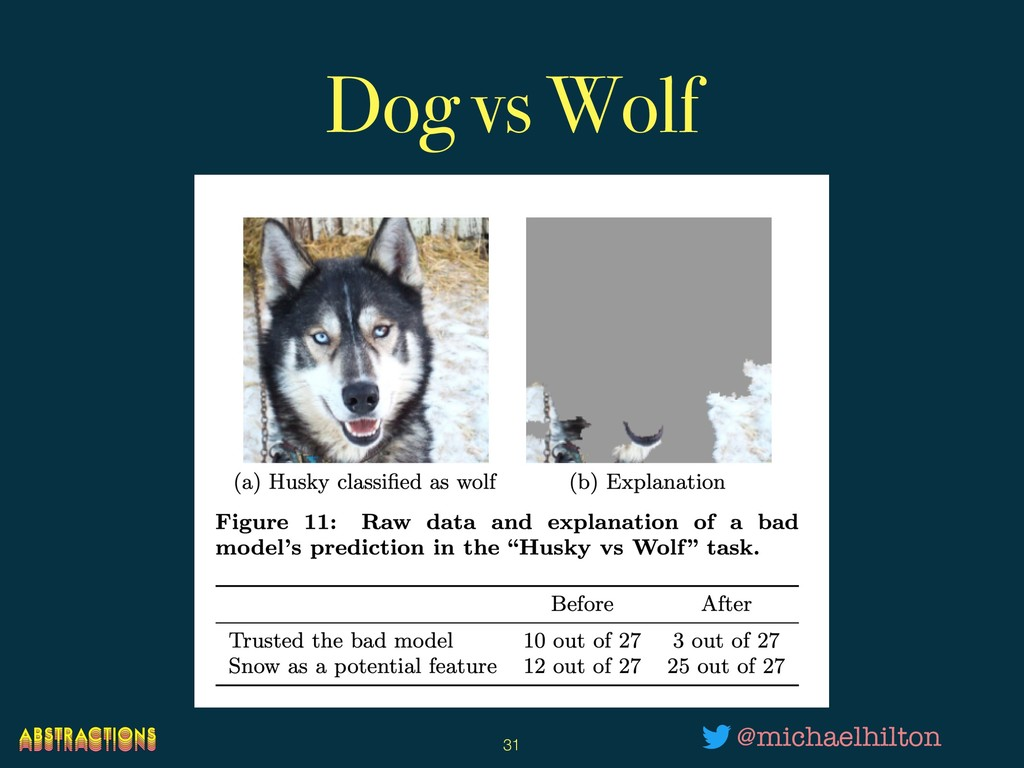 Dog vs Wolf !31 @michaelhilton