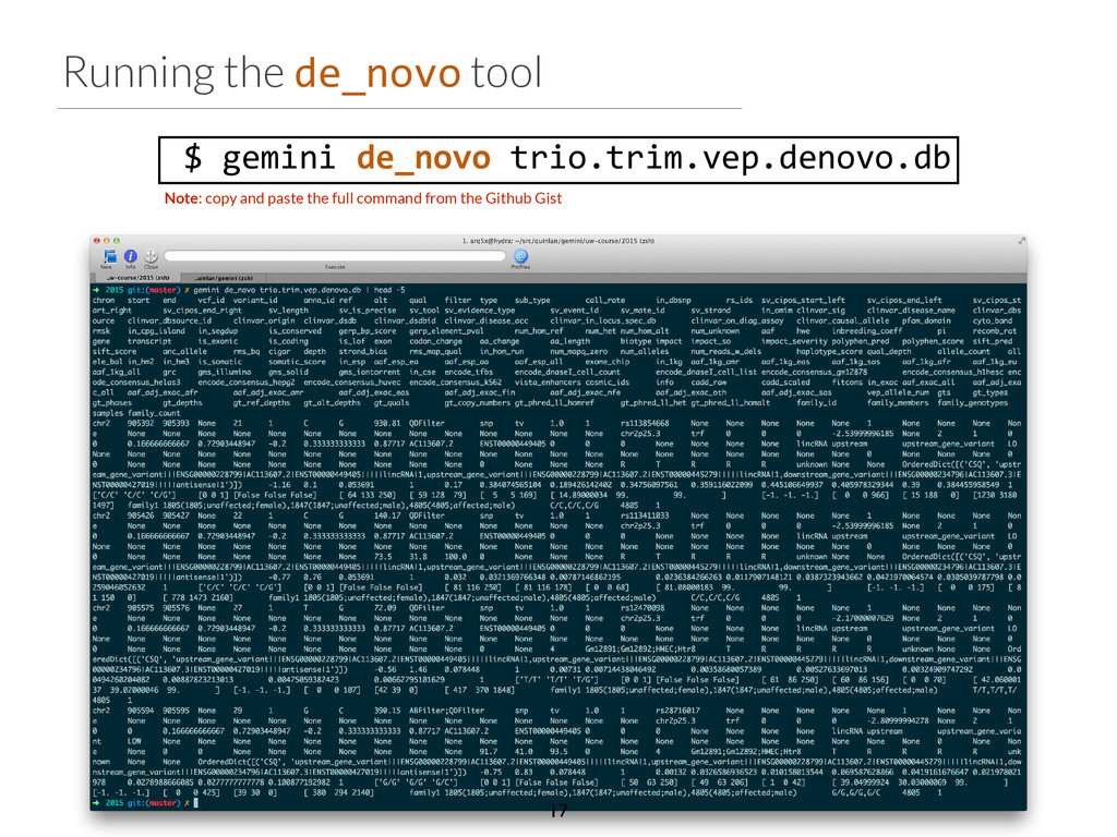 Running the de_novo tool 	