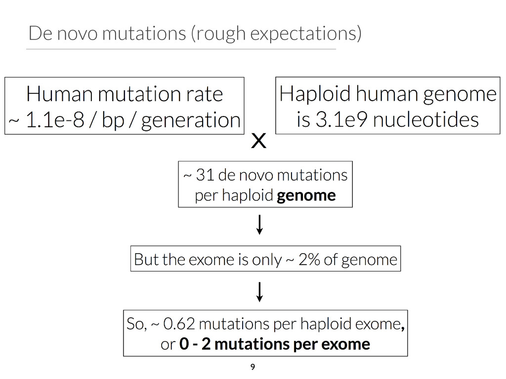 De novo mutations (rough expectations) 9