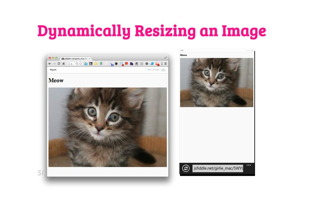 Dynamically Resizing an Image 56