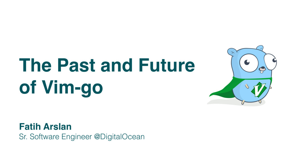 The Past and Future of Vim-go Fatih Arslan Sr. ...