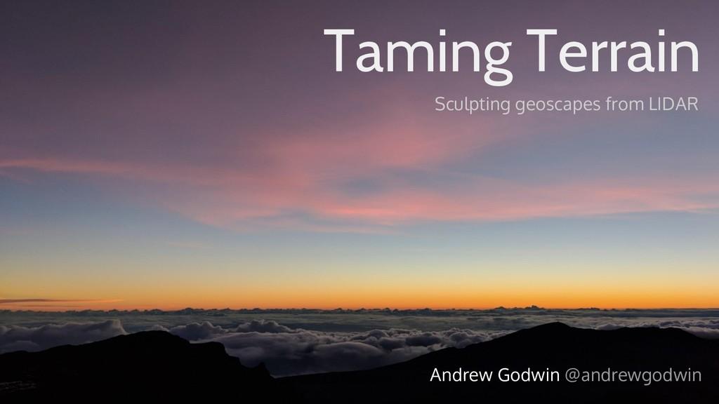 Taming Terrain Sculpting geoscapes from LIDAR A...