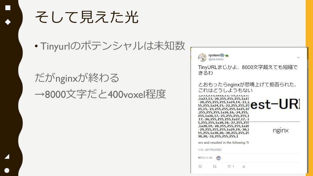 そして見えた光 • Tinyurlのポテンシャルは未知数 だがnginxが終わる →8000文...