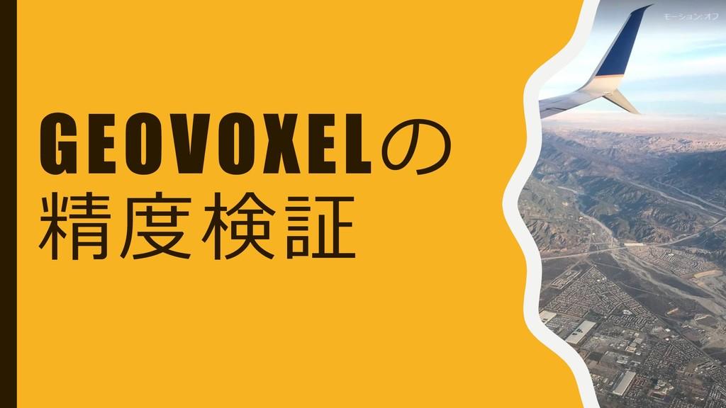 GEOVOXELの 精度検証