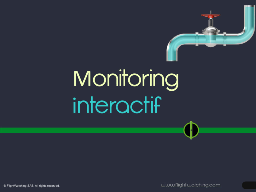www.flightwatching.com interactif Monitoring © ...