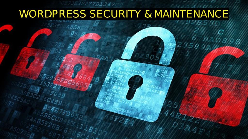 WORDPRESS SECURITY & MAINTENANCE