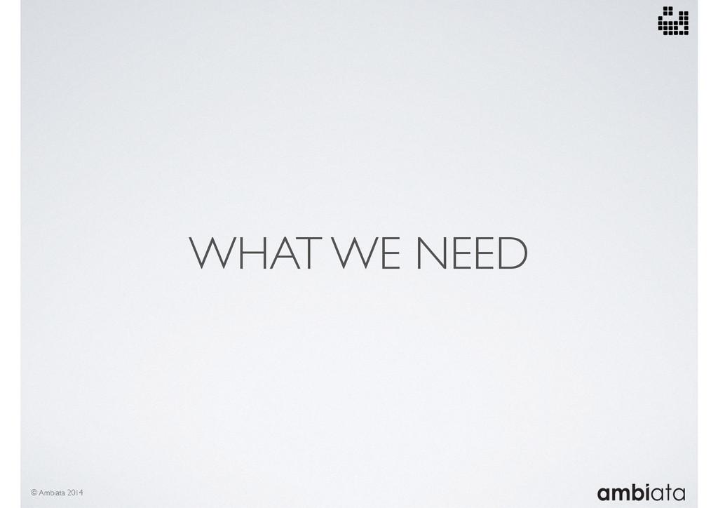 WHAT WE NEED © Ambiata 2014