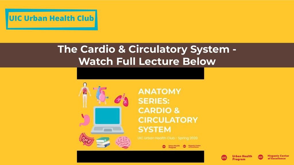 UIC Urban Health Club The Cardio & Circulatory ...