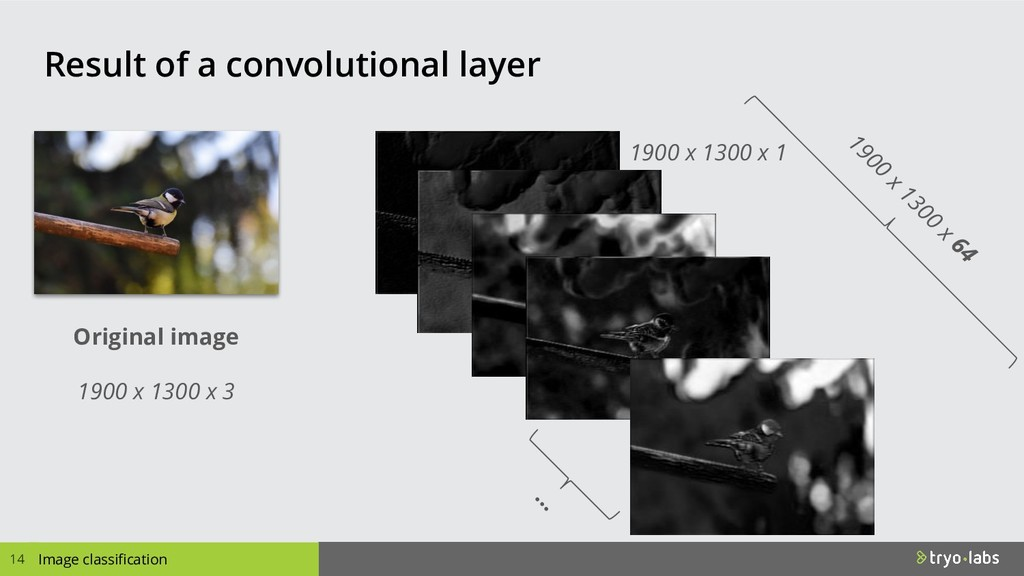 Result of a convolutional layer 14 Image classi...