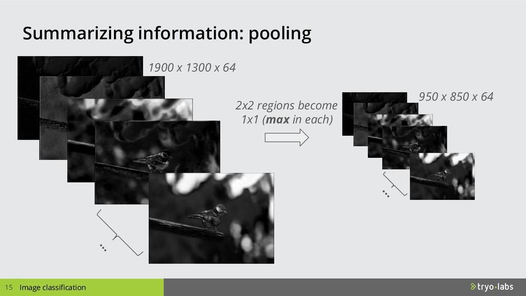 Summarizing information: pooling 15 Image class...