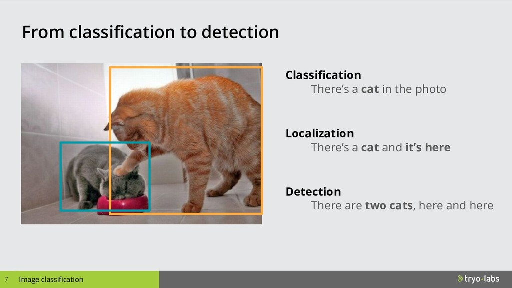 Image classification From classification to det...
