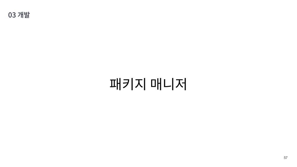 패키지 매니저 !57 03 개발