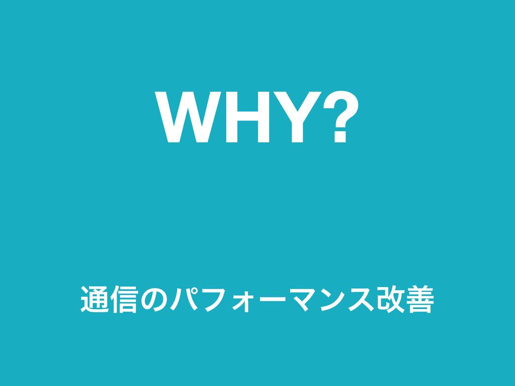 WHY? ௨৴ͷύϑΥʔϚϯεվળ