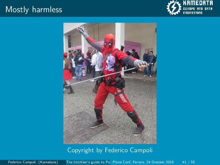 Mostly harmless Copyright by Federico Campoli F...
