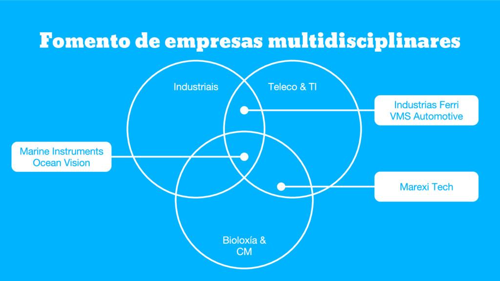 Fomento de empresas multidisciplinares