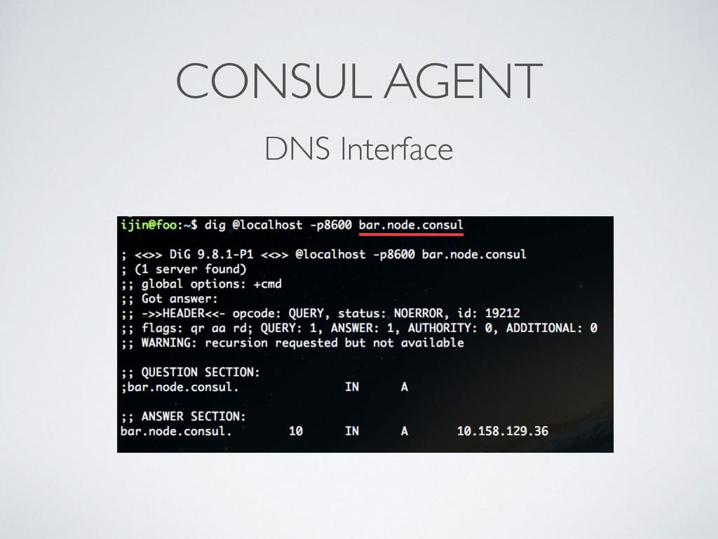 CONSUL AGENT DNS Interface