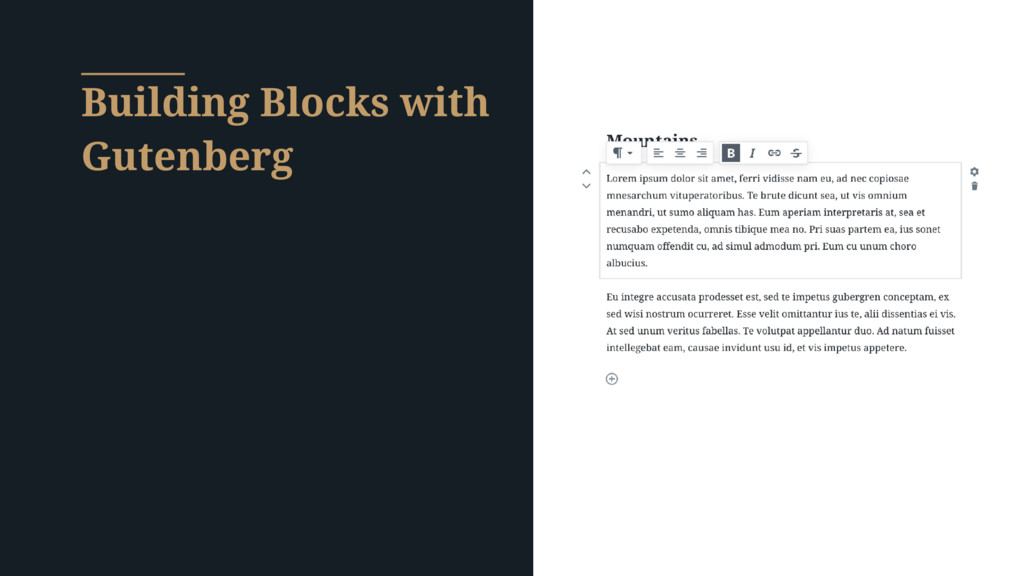Building Blocks with Gutenberg