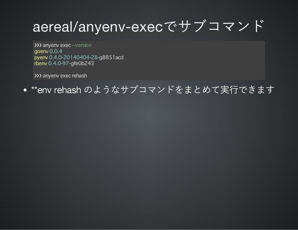 aereal/anyenv-exec でサブコマンド ❯❯❯ anyenv exec --ve...