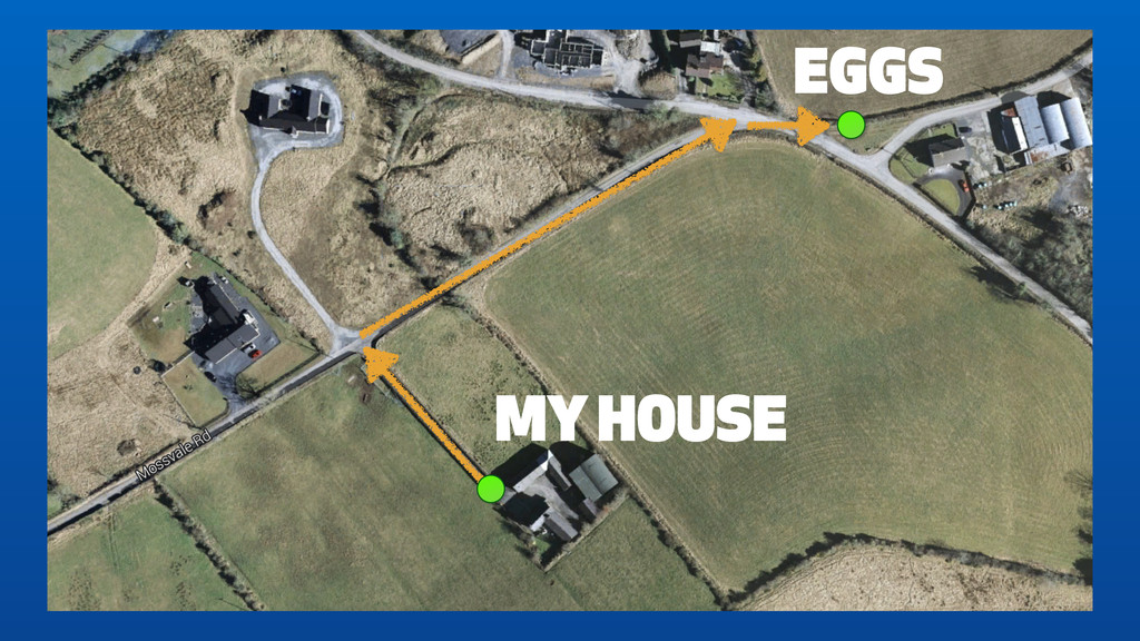 EGGS MY HOUSE