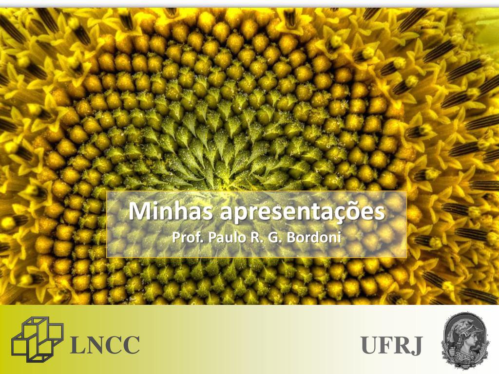 LNCC Minhas apresentações Prof. Paulo R. G. Bor...