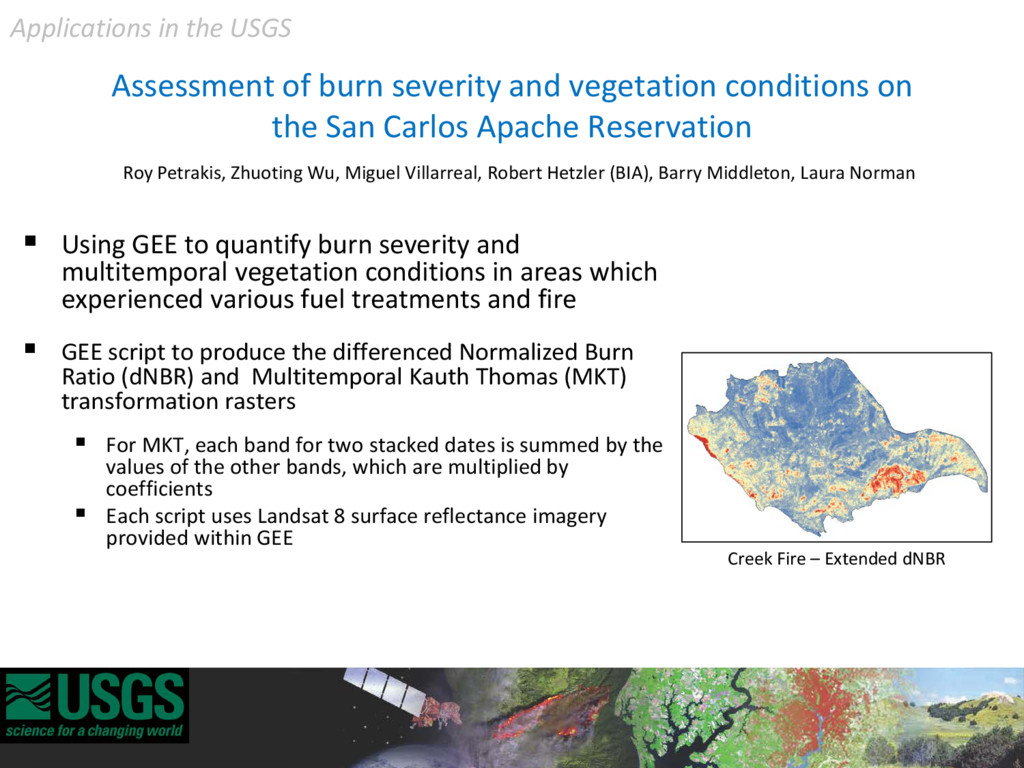 Assessment of burn severity and vegetation cond...